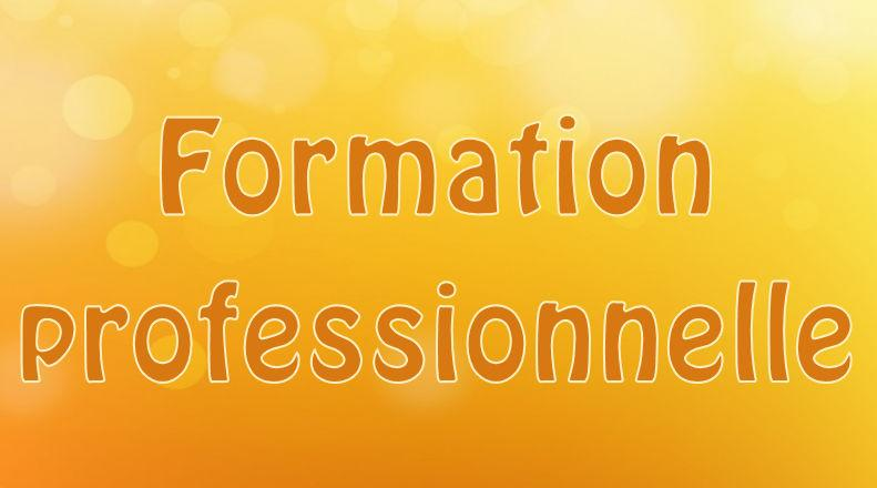 Formation pro 2